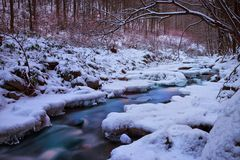 Zamarznięty Mały strumień Zdjęcie Royalty Free