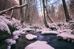 Zamarznięty Mały strumień Fotografia Stock