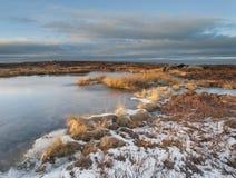 Zamarznięty moorland bagno Zdjęcia Royalty Free