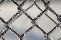 Zamarznięty ogrodzenie robić metal siatka zakrywająca z mrozowymi kryształami, fotografia royalty free