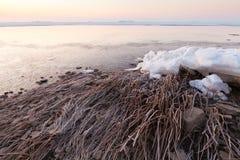 Zamarznięty wybrzeże z płochami i kawałami lód Zdjęcie Royalty Free