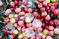 Zamarznięci agresty z kostkami lodu Zdjęcie Royalty Free