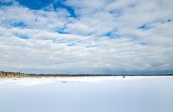 Zamarznięta bagno ziemia W zimie Obrazy Stock