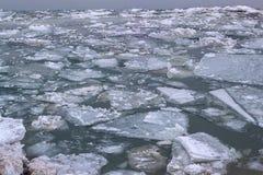 Zamarznięta Danube rzeka Obraz Stock