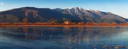 Zamarznięta jeziorna panorama Obraz Royalty Free