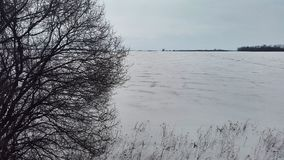 zamarznięta jeziorna zima Fotografia Royalty Free