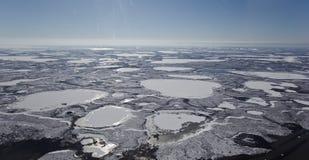 Zamarznięta Mackenzie Rzeczna delta, NWT, Kanada Zdjęcia Stock