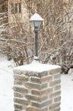 Zamarznięta Ogrodowa lampa Obrazy Royalty Free