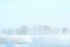 Zamarznięta rzeka i drzewa w hoarfrost Zdjęcie Royalty Free