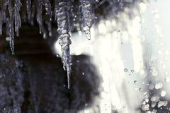 Zamarznięta wodna fontanna makro- Fotografia Royalty Free