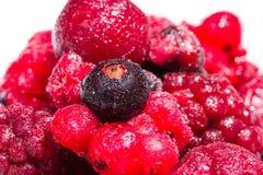 Dzikie owoc Zdjęcia Stock