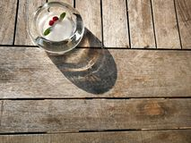 Zamarznięte Czerwone jagody zdjęcie stock