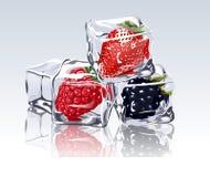 Zamarznięte jagody w kostce lodu ilustracja wektor