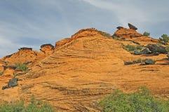 Zamarznięte piasek diuny w pustyni Zdjęcia Royalty Free