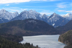 Zamarznięty Alpsee jezioro Fotografia Royalty Free