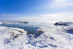 Zamarznięty Jeziorny Ontario Fotografia Royalty Free