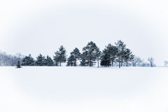 Zamarznięty krajobraz Zdjęcie Royalty Free