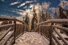 Zamarznięty most w Parkowym krajobrazie Obrazy Royalty Free