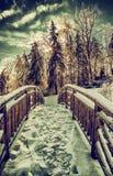 Zamarznięty most w Parkowym krajobrazie - Retro Fotografia Royalty Free