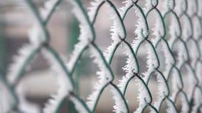 Zamarzni?ty ogrodzenie robi? metal siatka zakrywaj?ca z mrozowymi kryszta?ami, wczesny pogodny zimny ranek zdjęcie wideo