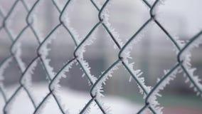 Zamarzni?ty ogrodzenie robi? metal siatka zakrywaj?ca z mrozowymi kryszta?ami, wczesny pogodny zimny ranek zbiory wideo