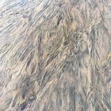 Zamarznięty piasek zdjęcie royalty free