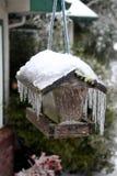 Zamarznięty ptasi dozownik Zdjęcie Royalty Free