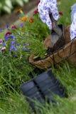 Zamazani kwiatów zbiorniki Fotografia Stock