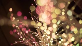 zamazani nocy światła w bokeh rozjarzonym drzewie zbiory