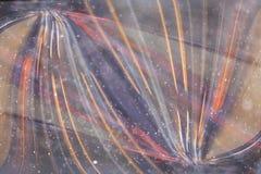 Zamazany kolor linii tło Obraz Stock