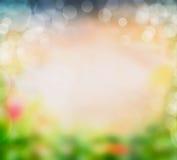 Zamazany lato natury tło z zieleniami, niebem, kwiatami i bokeh, Obrazy Stock