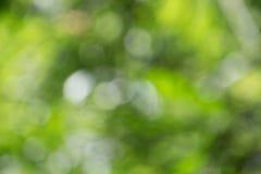 Zamazany natury tło Zdjęcie Royalty Free