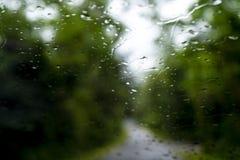 Zamazany park z bokeh światłem długi droga w padać dzień dalej zdjęcia stock