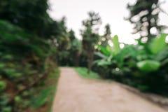Zamazany tła przejście w lesie lub parku obrazy stock