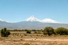 Zamazany tło Atacama pustyni krajobraz z nakrywającymi Andyjskimi wulkanami, solankowym mieszkaniem i niektóre roślinnością na ho fotografia stock