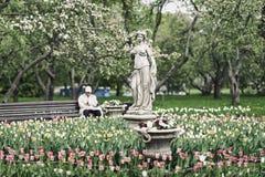 Zamazany wizerunek unrecognizable starsze osoby mężczyzna, emeryt, osamotniony odpoczywać w kwitnącym wiosna parku Selekcyjna ost Obrazy Royalty Free