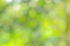 Zamazany zielony bokeh abstrakt Obrazy Stock