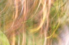 zamazujący abstrakcyjne tło Brzoskwini lekkie linie Obraz Royalty Free