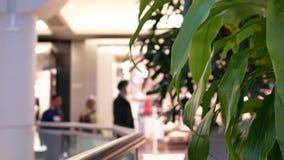 Zamazuje ruch ludzie robi zakupy wśrodku Burnaby zakupy centrum handlowego zdjęcie wideo