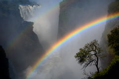 Rainbow. Zambesi river and Victoria Falls. Zimbabwe. Victoria Falls, or Mosi-oa-Tunya (the Smoke that Thunders), is a waterfall in southern Africa on Stock Photography