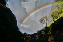 Zambesi river and Victoria Falls. Zimbabwe Stock Images