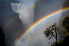 Zambesirivier en Victoria Falls zimbabwe stock fotografie