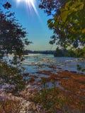 Zambezi Rive zdjęcie stock