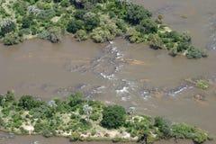 Zambezi River Royaltyfria Bilder
