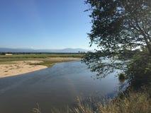 Zambezi River i Chirindu Arkivfoto
