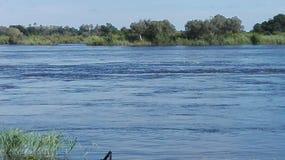 Zambezi River Livingstone Zambia Arkivbilder