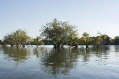 Zambezi river Royalty Free Stock Images