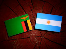 Zambia flag with Argentinian flag on a tree stump isolated Royalty Free Stock Images