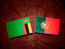 Zambia flag with Portuguese flag on a tree stump isolated royalty free stock image
