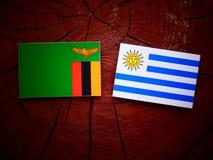 Zambiaanse vlag met Uruguaian-vlag op een geïsoleerde boomstomp stock illustratie